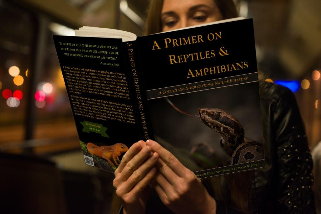 A Primer on Reptiles and Amphibians